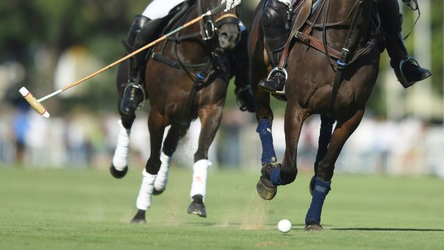 LA Dolfina vs. Ellerstina