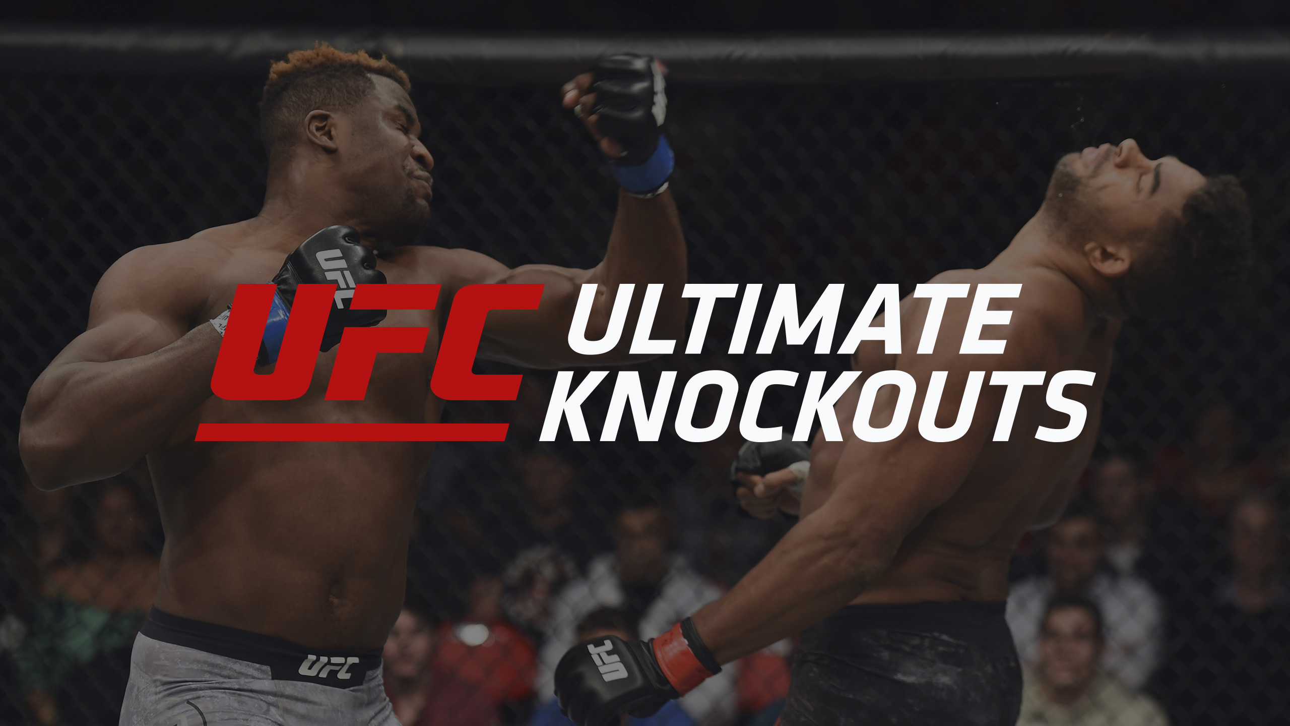 UFC Ultimate Knockouts: Title Fight Knockouts