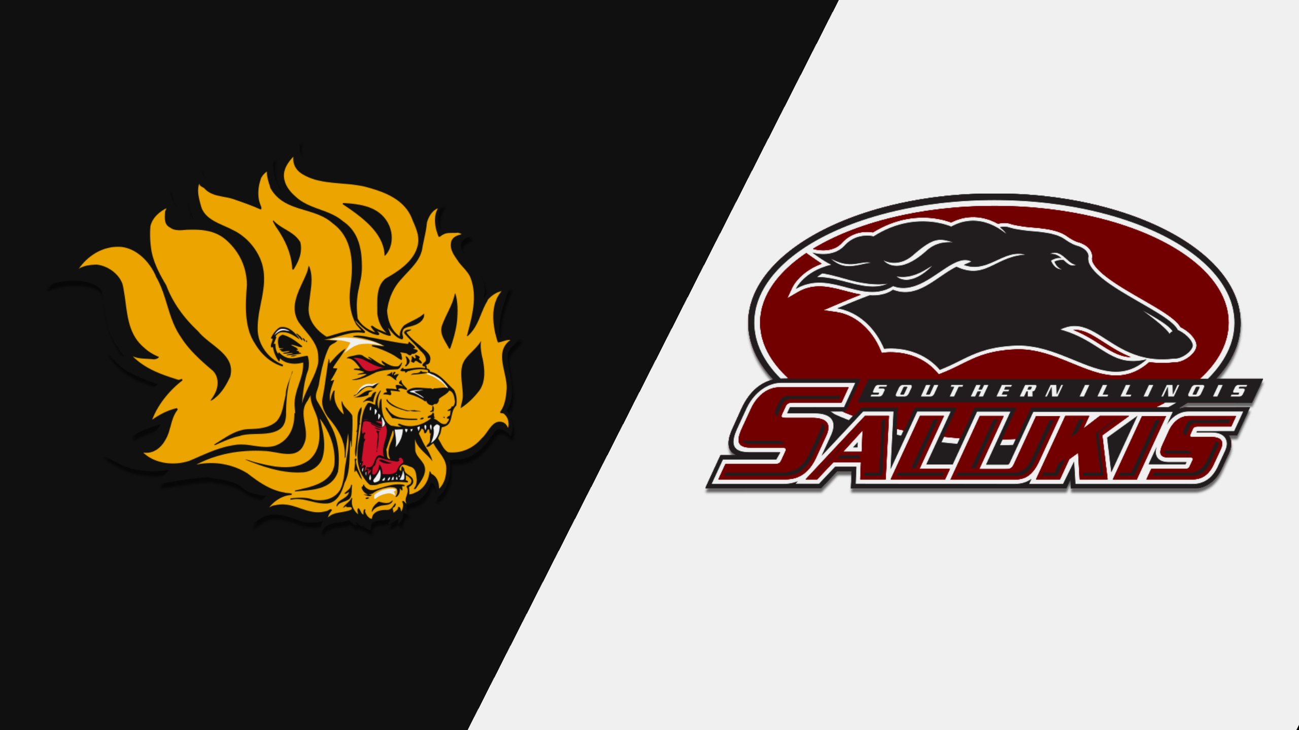Arkansas-Pine Bluff vs. Southern Illinois (M Basketball)