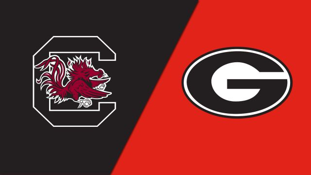 South Carolina vs. Georgia (W Volleyball)