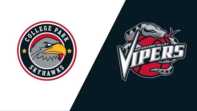 College Park SkyHawks vs. Rio Grande Valley Vipers