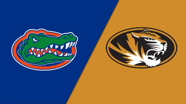 Florida vs. Missouri (W Basketball)