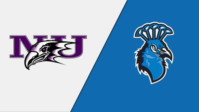 Niagara vs. Saint Peter's (M Basketball)