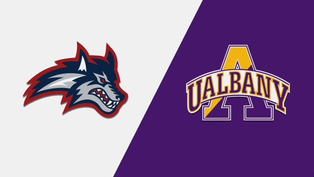 Stony Brook vs. Albany (W Basketball)