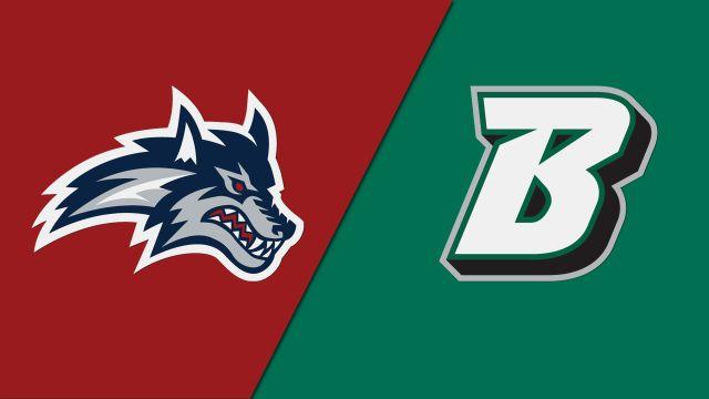 Stony Brook vs. Binghamton (W Basketball)