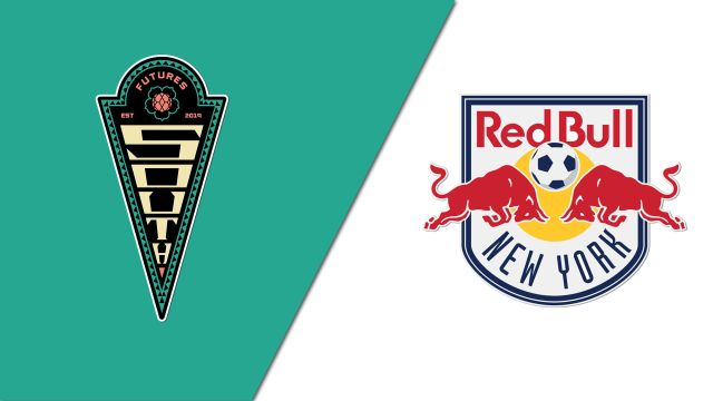 ICC South vs. New York Red Bulls Under-14