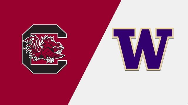#17 South Carolina vs. #1 Washington (Softball)