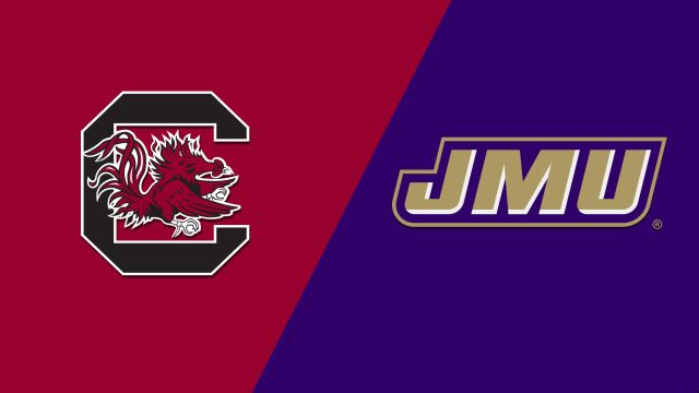 #17 South Carolina vs. #20 James Madison (Softball)