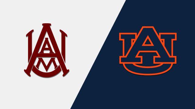 Alabama A&M vs. Auburn (Baseball)