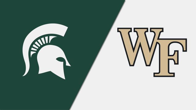 Michigan State vs. #20 Wake Forest (Field Hockey)