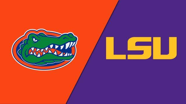 Florida Gators vs. LSU Tigers