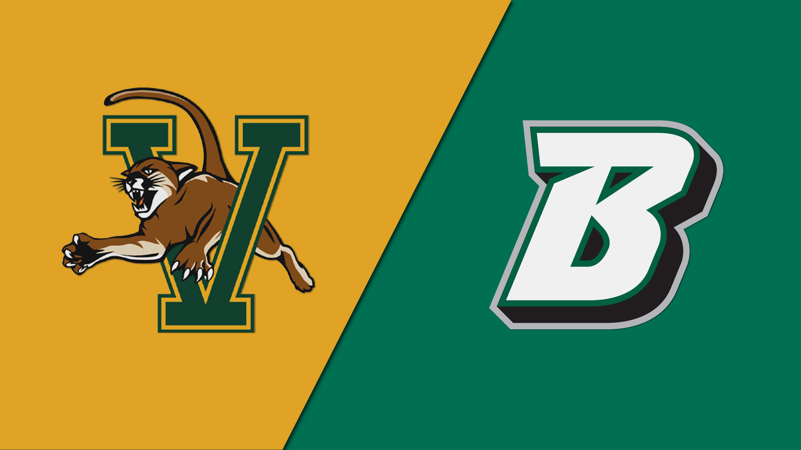 Vermont vs. Binghamton (W Basketball)