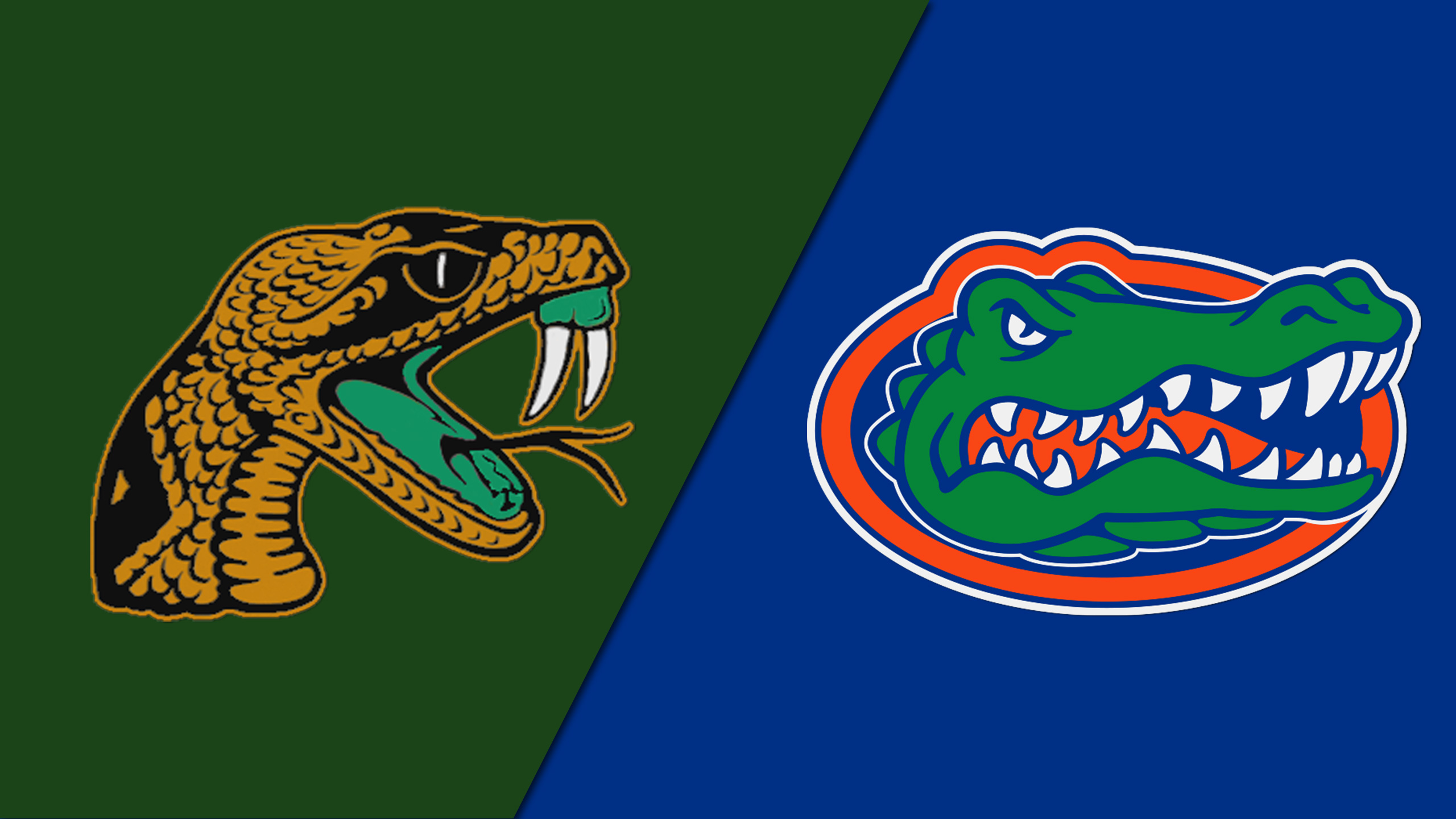 Florida A&M vs. Florida