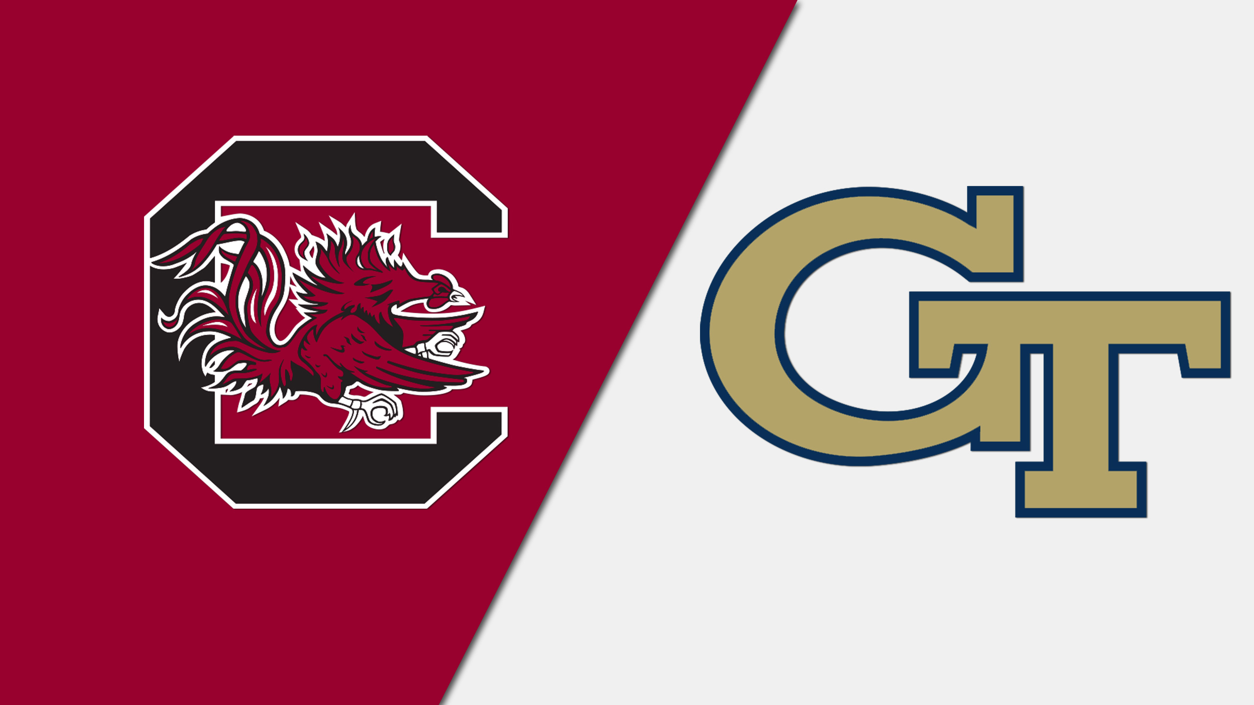 South Carolina vs. Georgia Tech (Swimming & Diving)