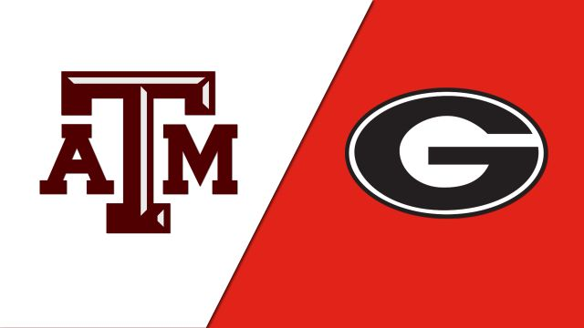 #15 Texas A&M vs. #6 Georgia (Second Round) (Baseball)