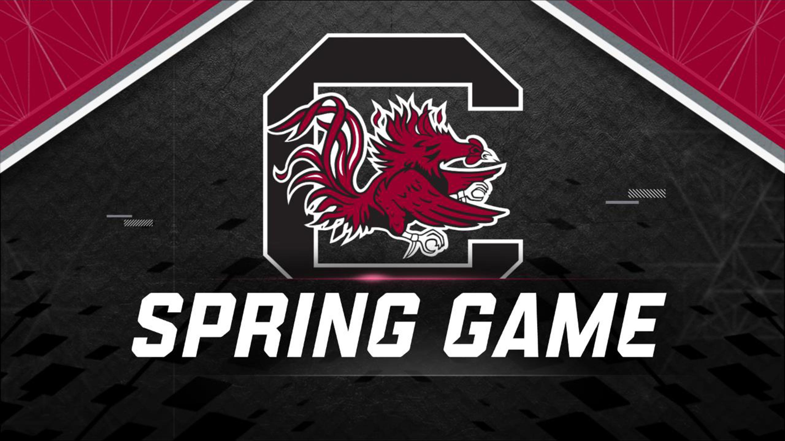 South Carolina Spring Football Game