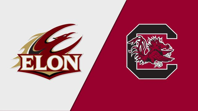 Elon vs. #22 South Carolina (Softball)