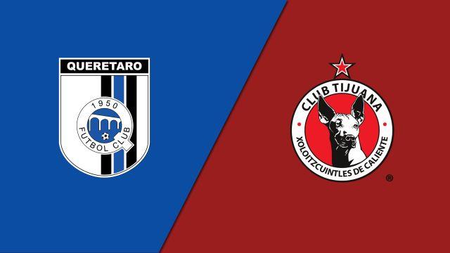 Tue, 8/13 - In Spanish-Gallos Blancos de Querétaro vs. Xolos de Tijuana (Jornada 3) (Copa MX)