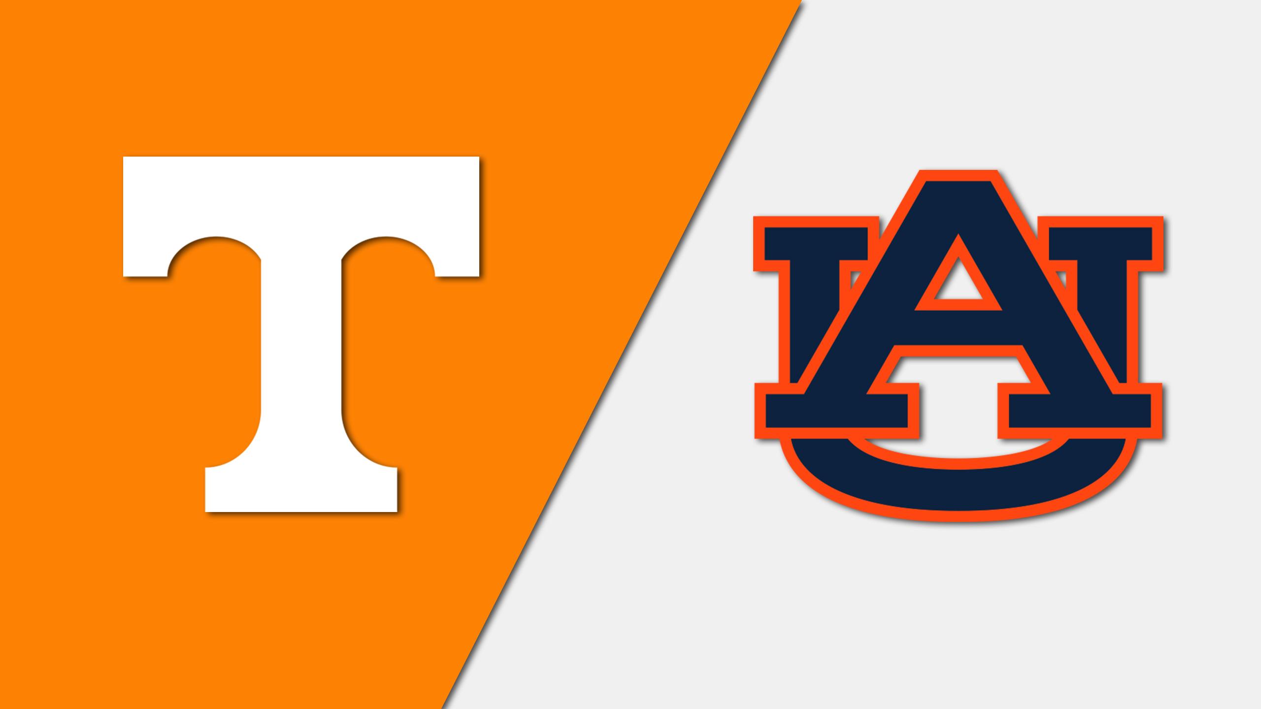 Tennessee vs. Auburn (W Volleyball)