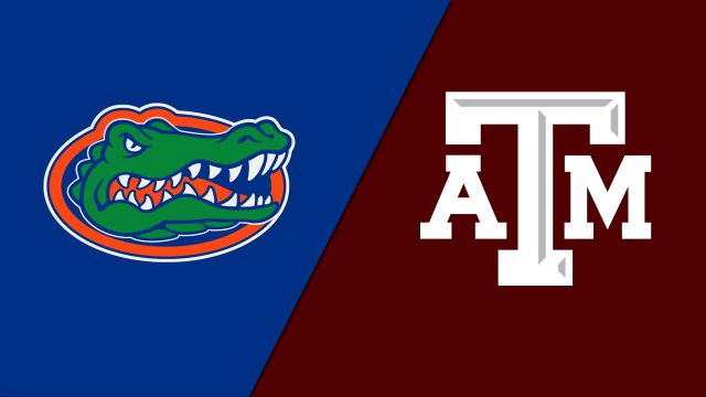 Florida vs. Texas A&M (First Round) (SEC Baseball Tournament)