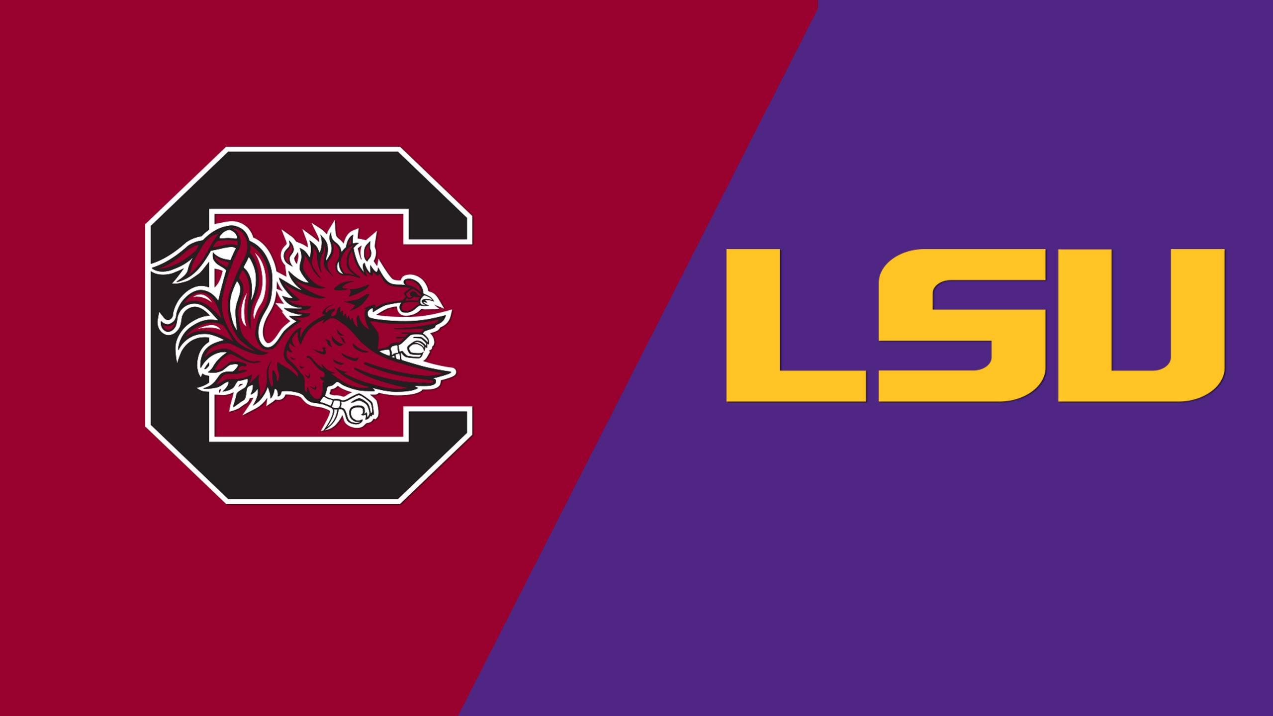 #8 South Carolina vs. LSU (W Soccer)