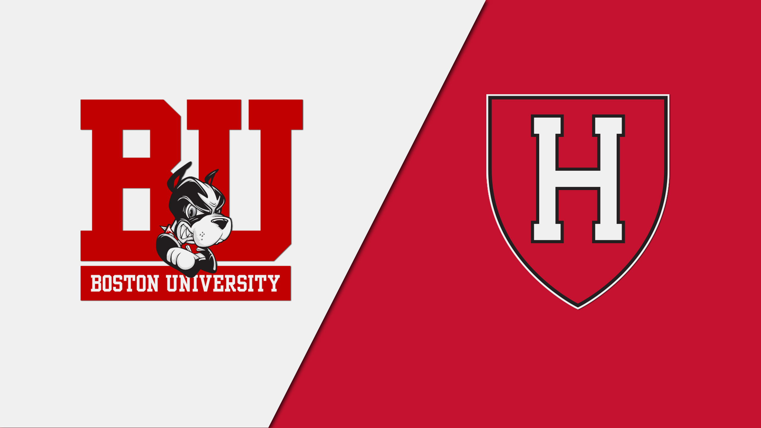 Boston University vs. Harvard (Court 5)