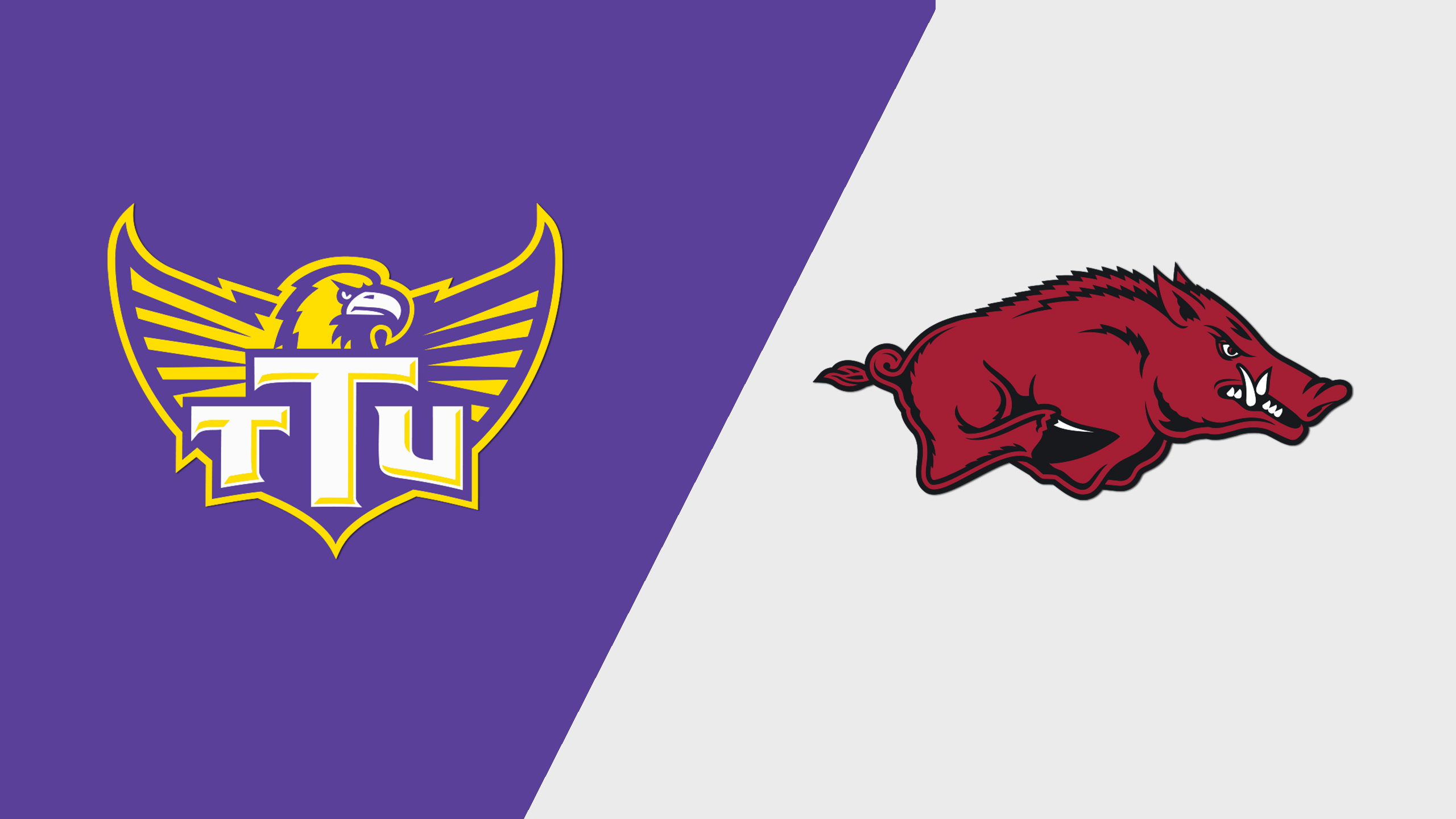 Tennessee Tech vs. Arkansas (W Basketball)