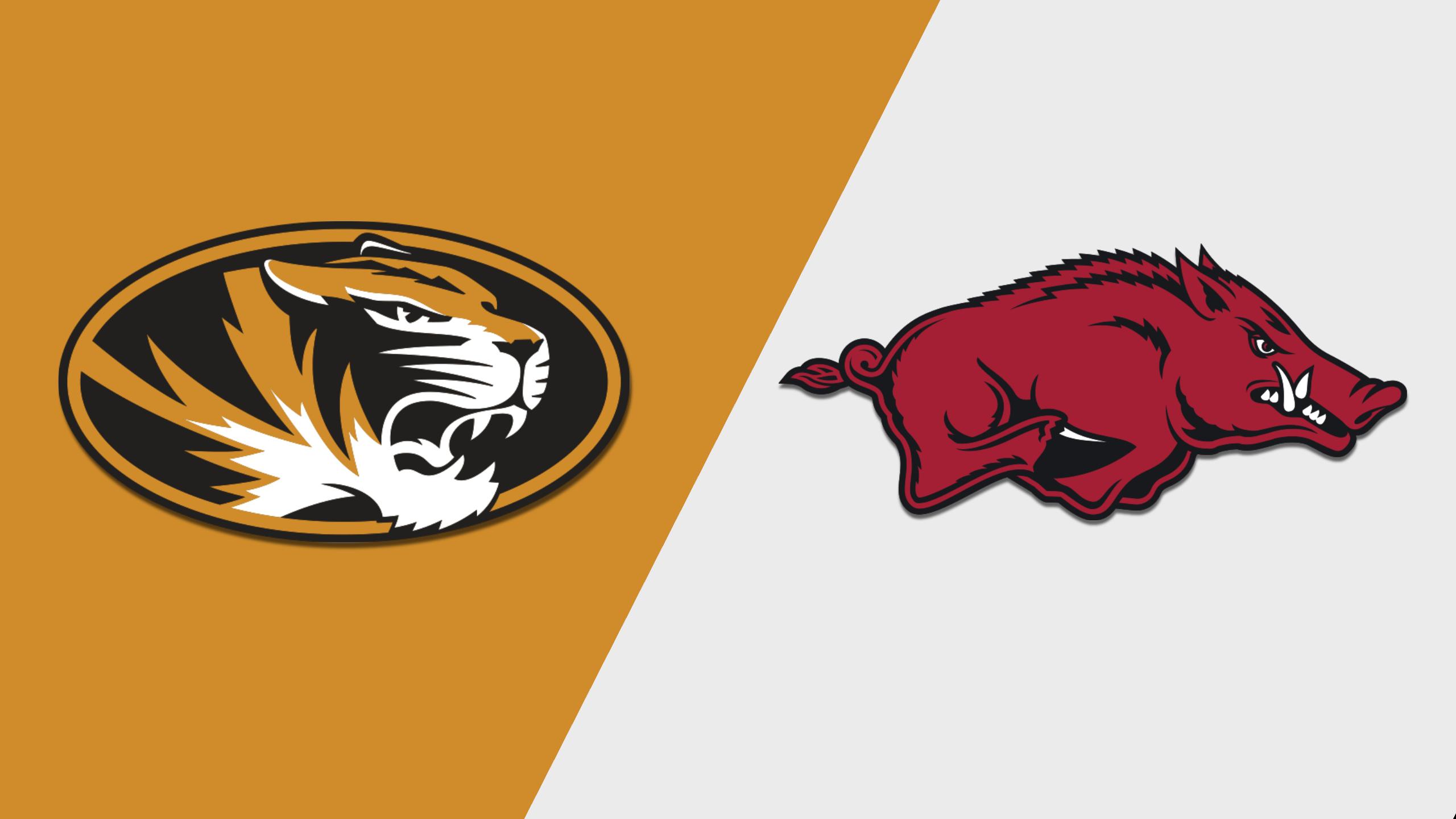 Missouri vs. Arkansas (M Basketball) (re-air)