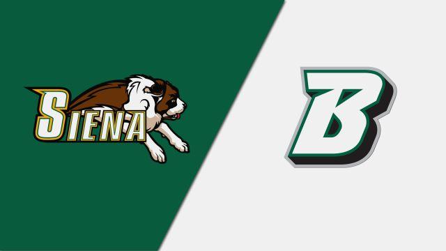 Siena vs. Binghamton (W Volleyball)