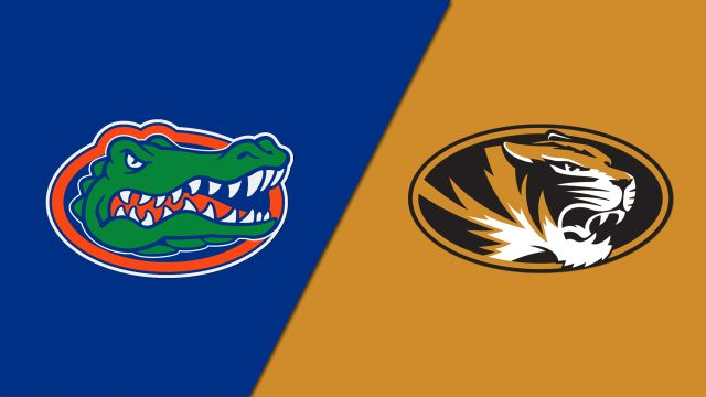 Florida vs. Missouri (Swimming)