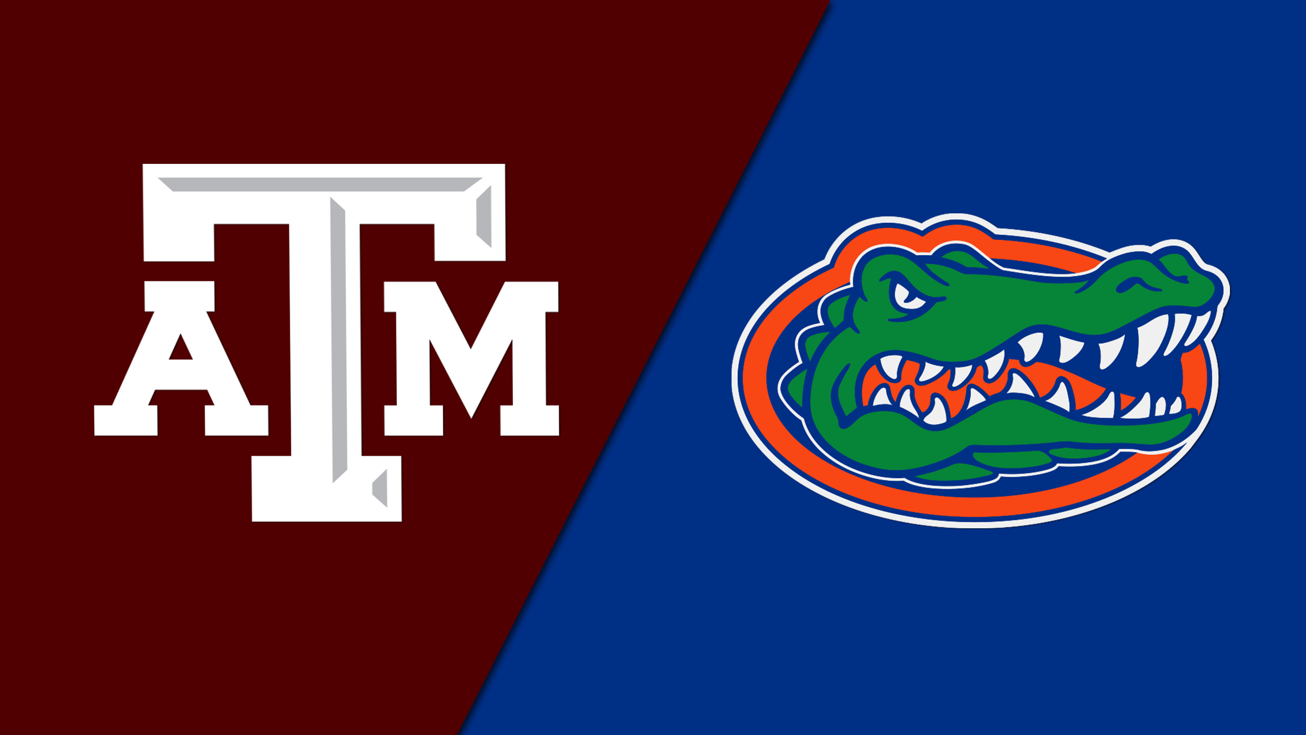 Texas A&M vs. Florida (M Basketball) (re-air)