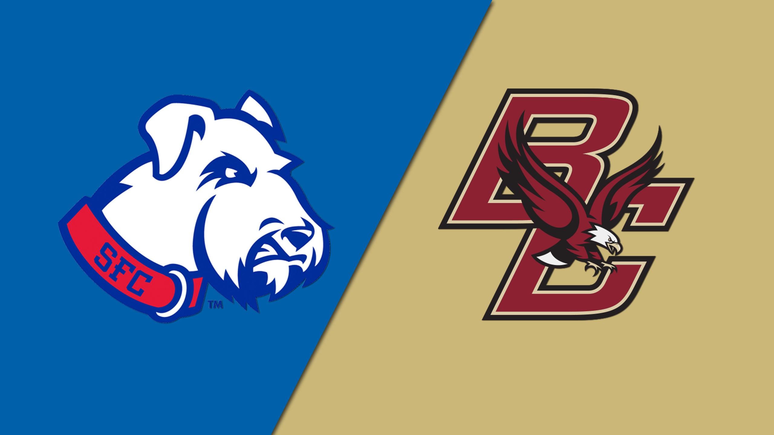 St. Francis (BKN) vs. Boston College (M Basketball)