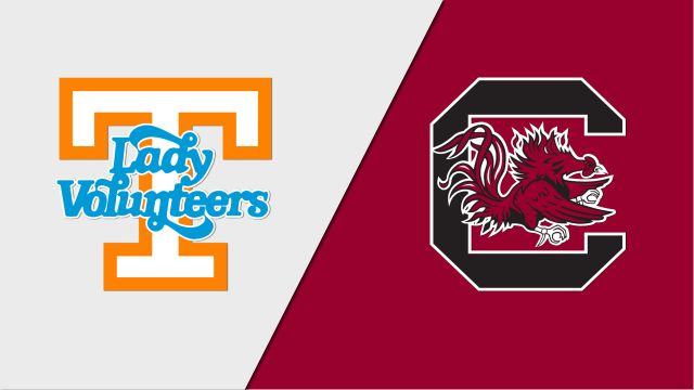 Tennessee vs. South Carolina (W Volleyball)