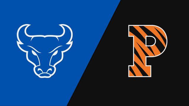 Court 3-Buffalo vs. Princeton (Court 3)