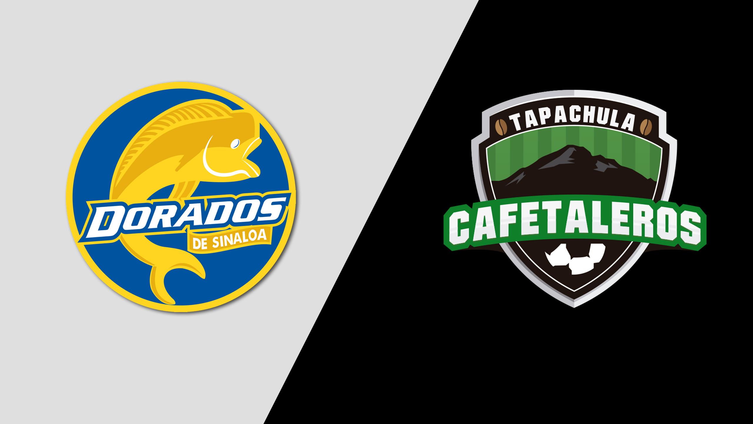 Dorados de Sinaloa vs. Cafetaleros de Tapachula (Jornada 8)