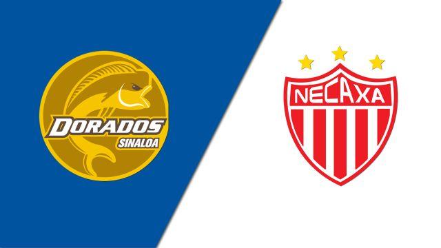 In Spanish-Dorados de Sinaloa vs. Rayos del Necaxa (Jornada 6) (Copa MX)