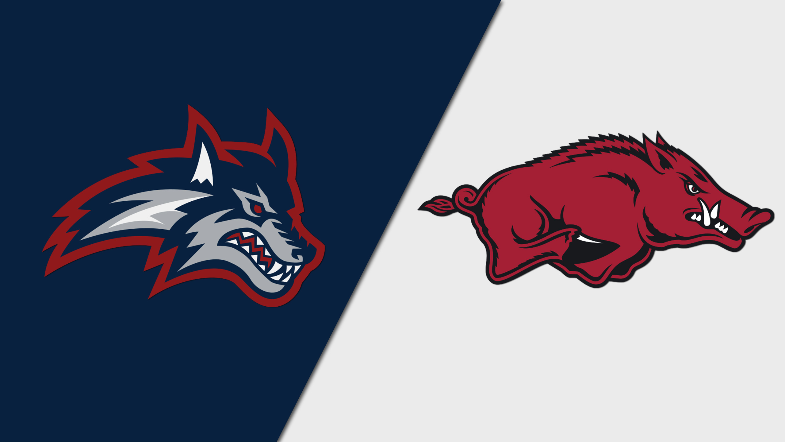 Stony Brook vs. Arkansas (Baseball)