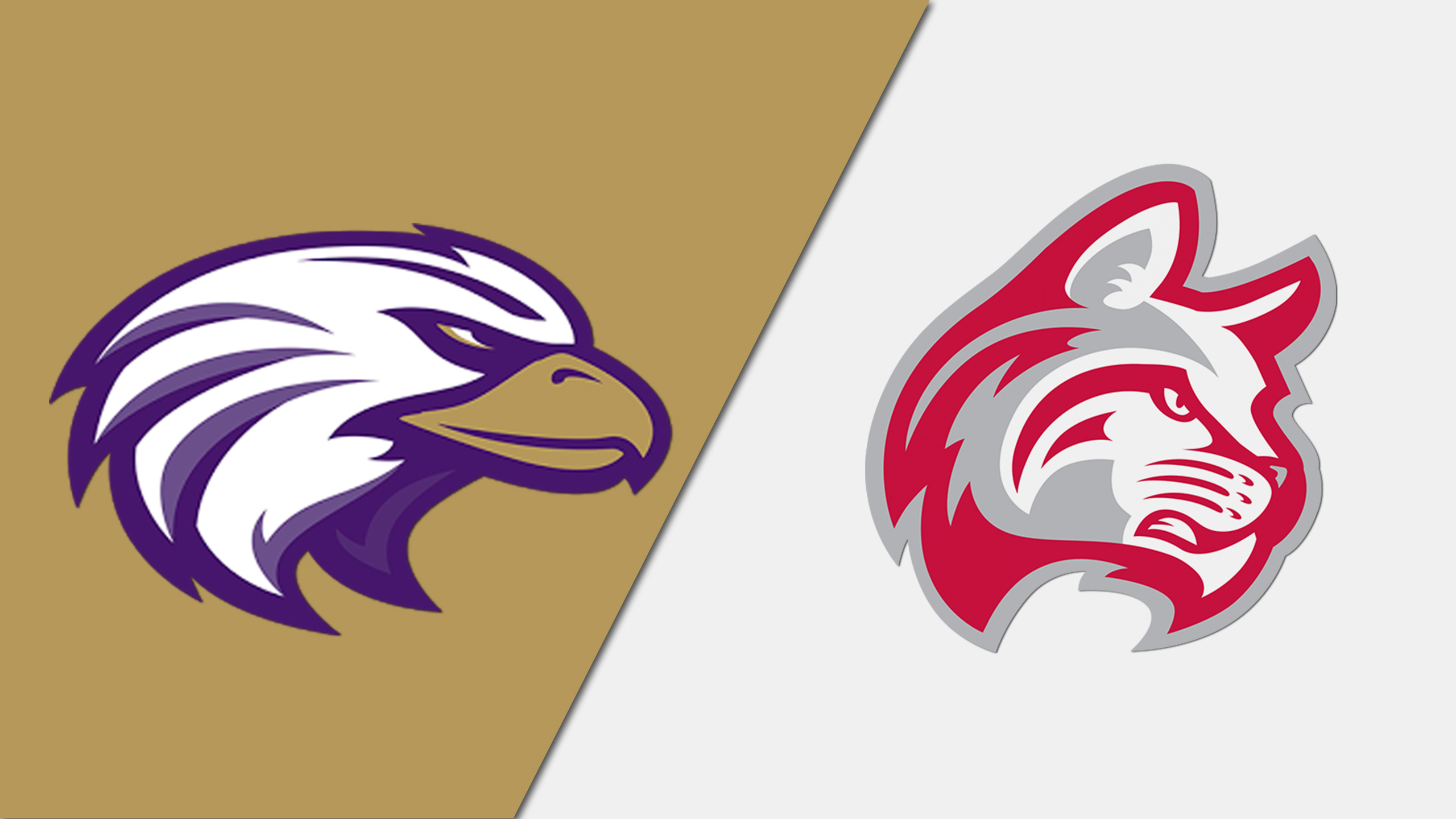 Cincinnati Christian vs. Indiana Wesleyan (M Basketball)