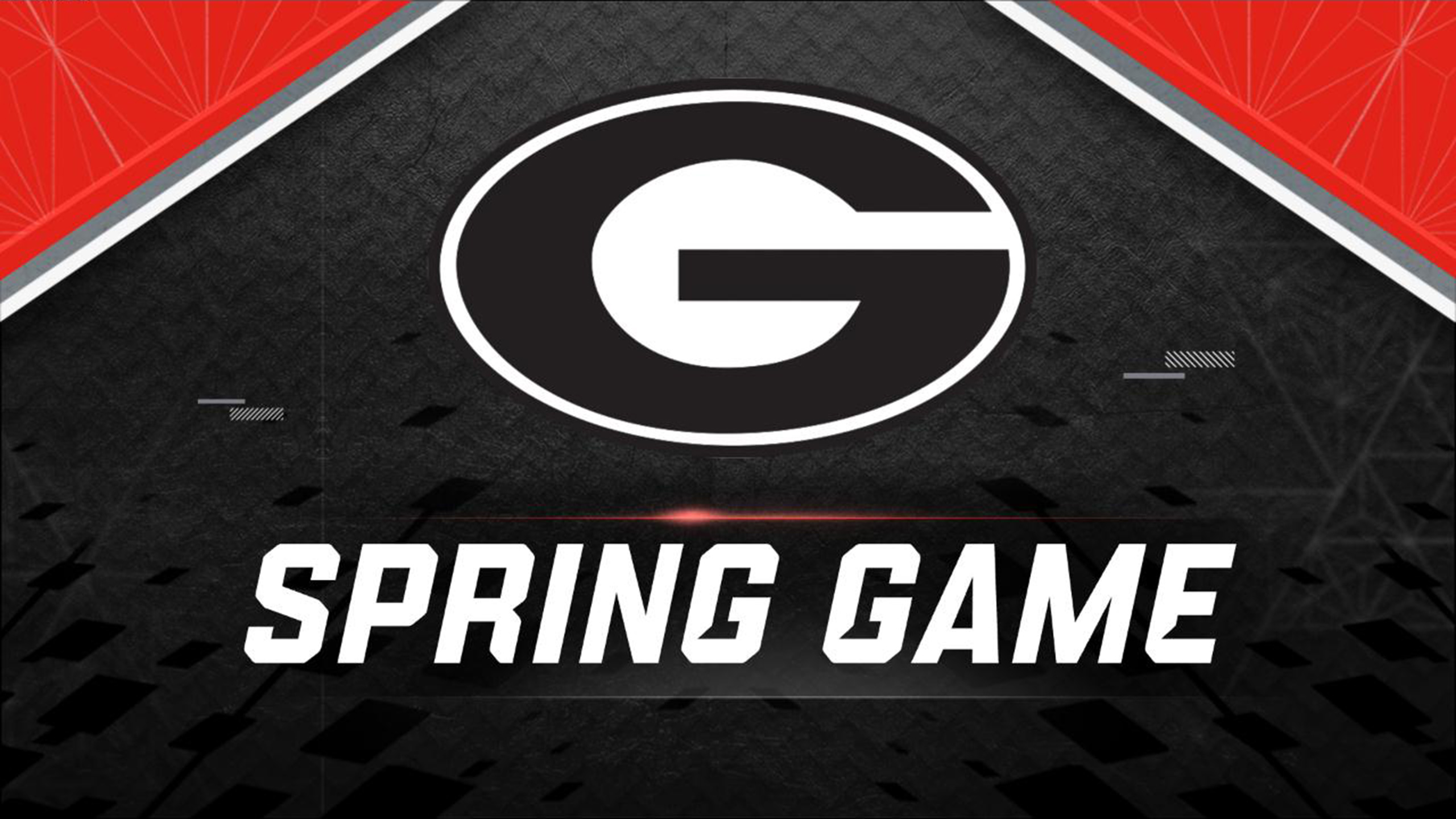 Georgia Spring Football Game