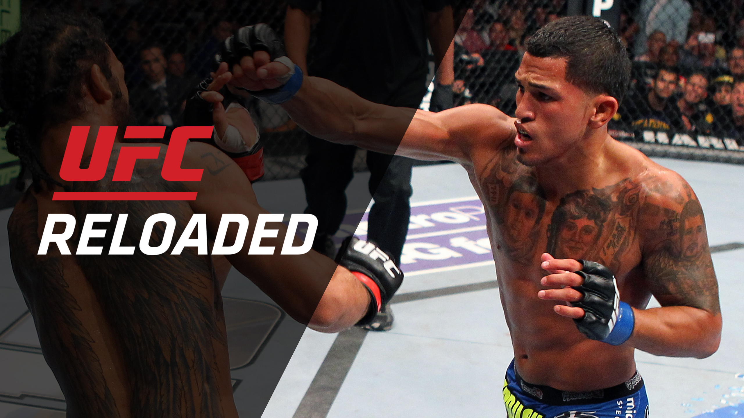 UFC Reloaded: 164: Henderson vs. Pettis