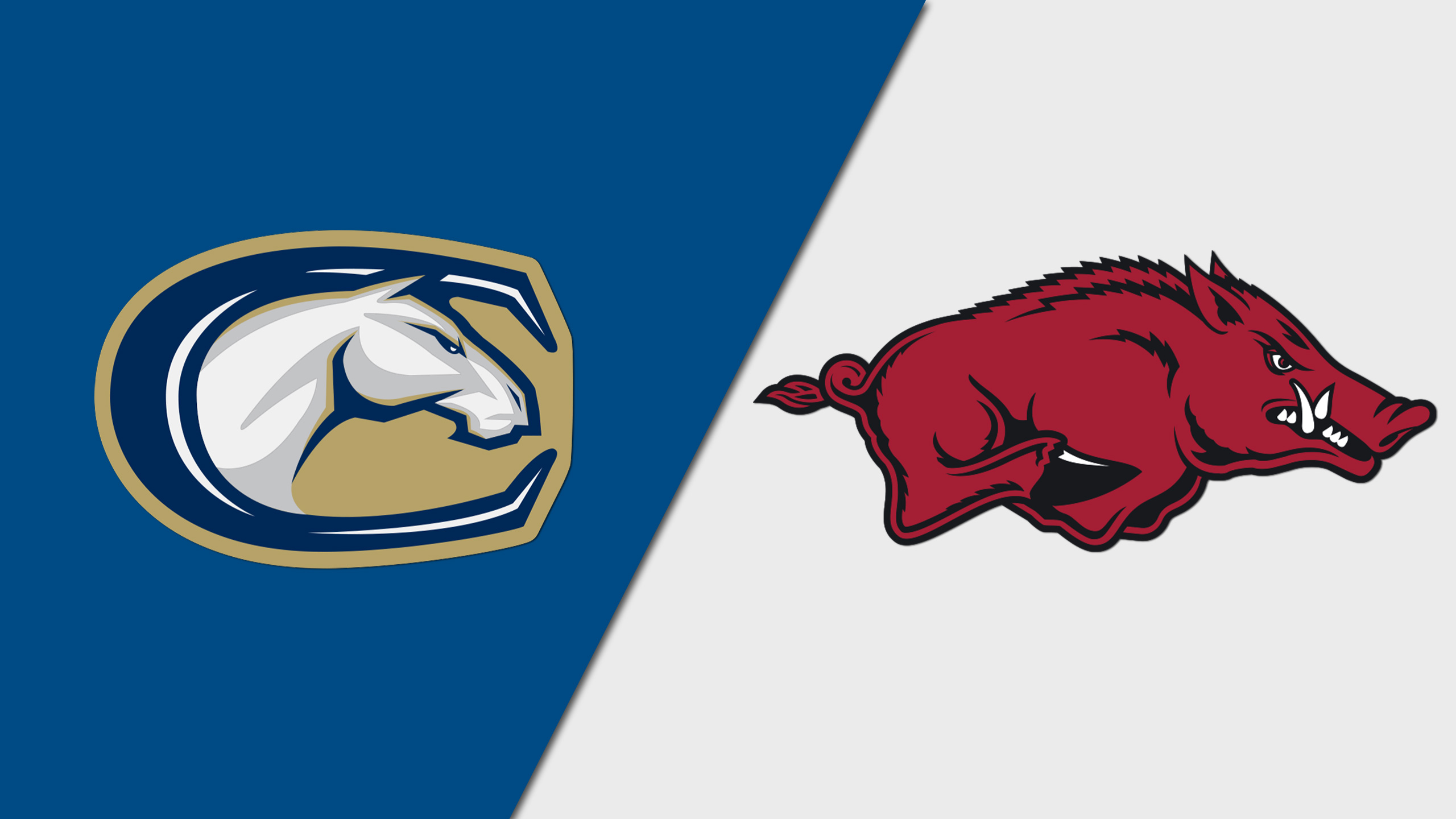 UC Davis vs. Arkansas (M Basketball)