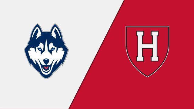 Connecticut vs. Harvard (Site 9 / Game 3)