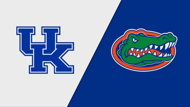 #17 Kentucky vs. #11 Florida (W Volleyball)