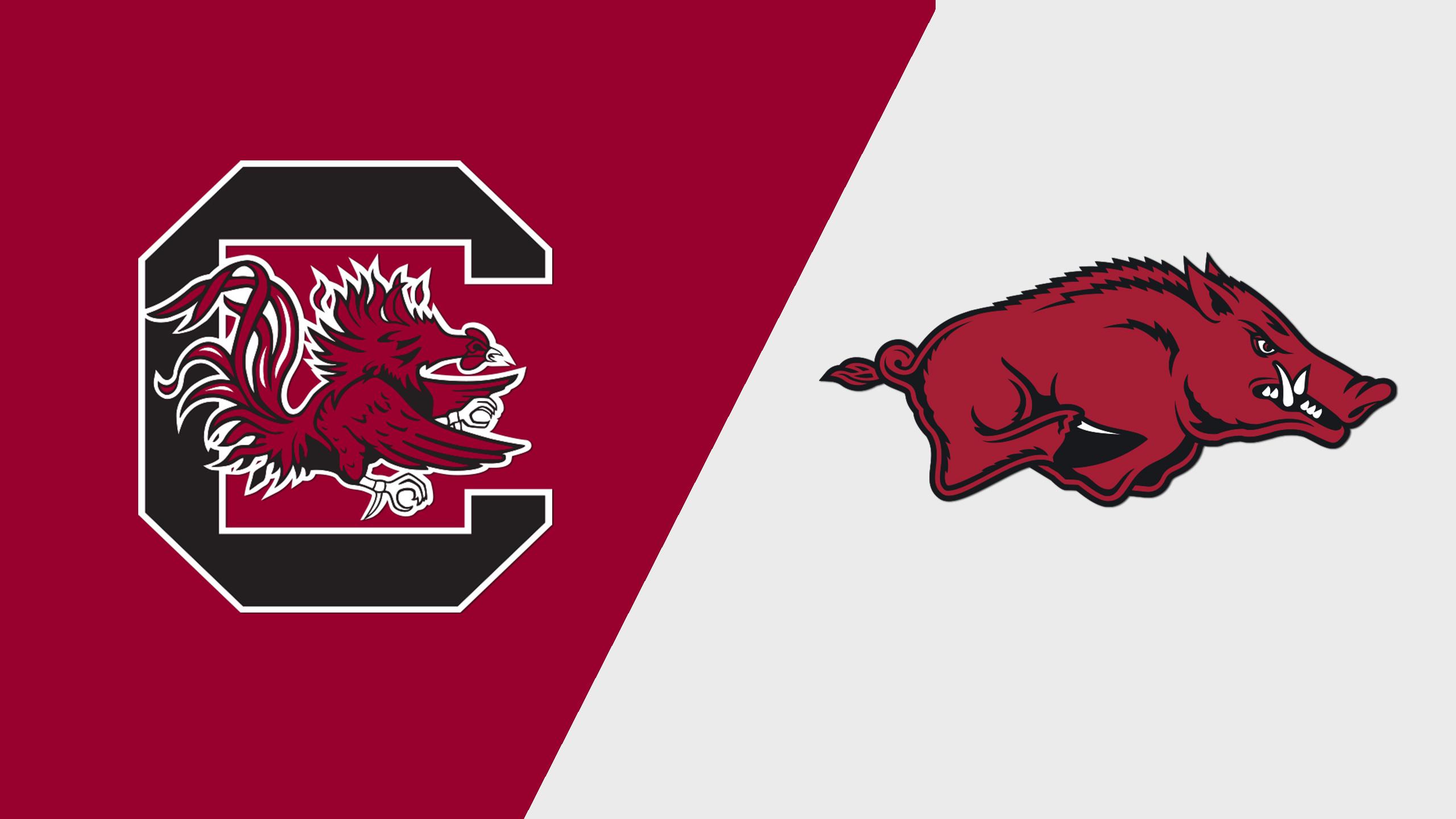 South Carolina vs. Arkansas (W Volleyball) (re-air)