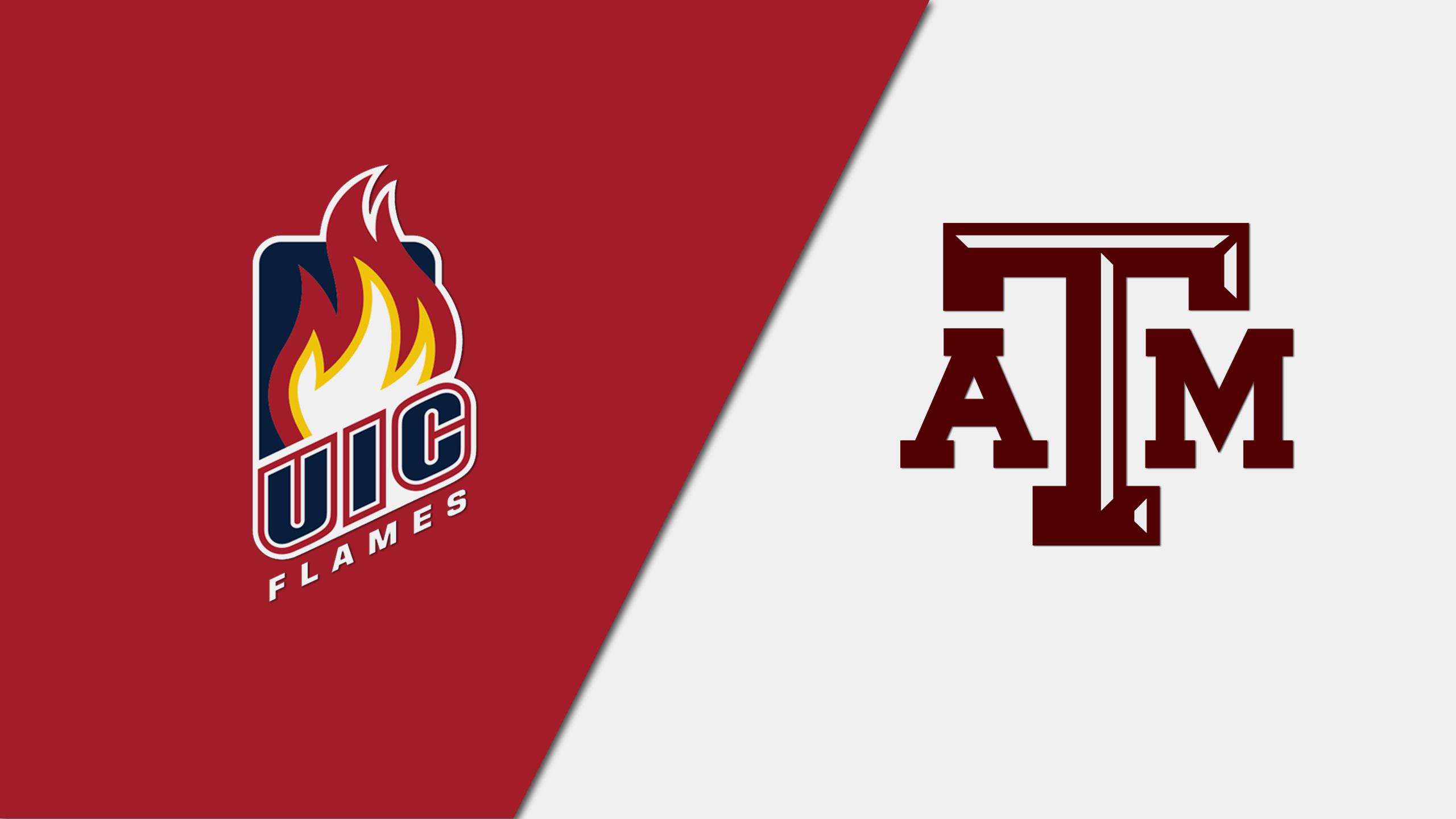 Illinois-Chicago vs. Texas A&M (Baseball)