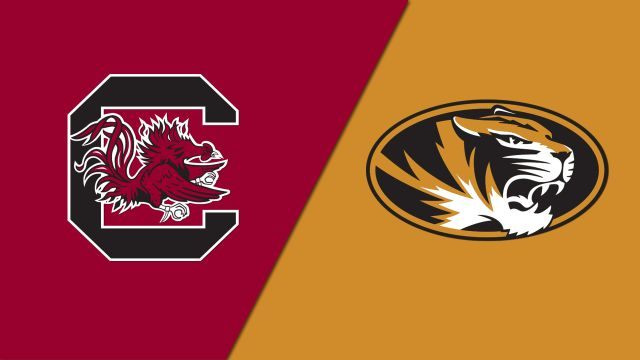 South Carolina vs. Missouri (W Volleyball)