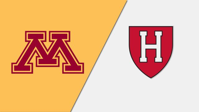 Court 3-Minnesota vs. Harvard (Court 3)