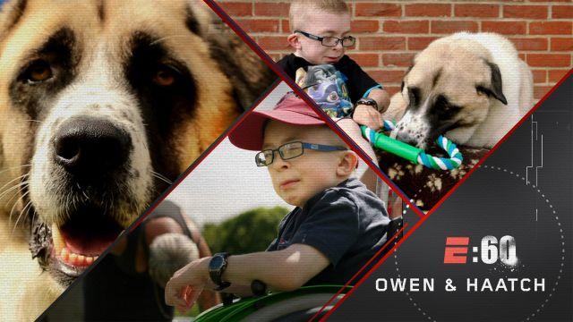 E:60 Pictures: Owen & Haatchi