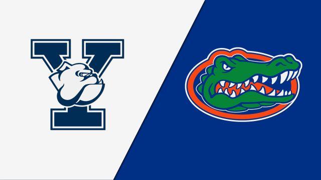 Yale vs. Florida (Baseball)