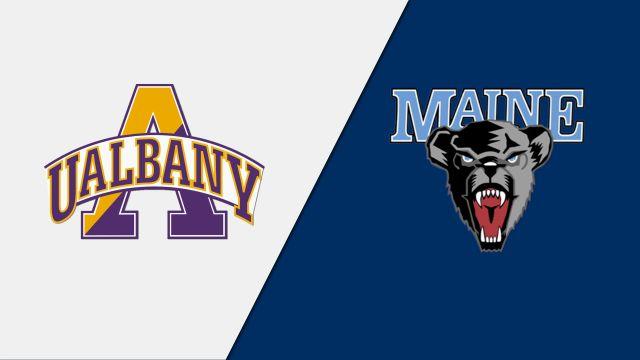 Albany vs. Maine (M Basketball)